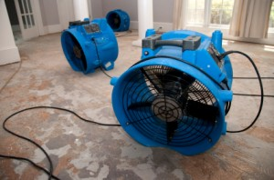 Water Damage Restoration | Emergency Water Removal - Water Damage Restoration | Emergency Water Removal -  Ozark AL 334-445-6000, Troy AL 334-770-4000